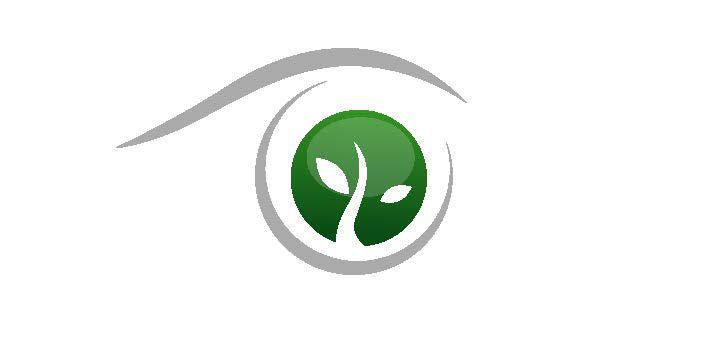 Vision to Legacy Group Logo