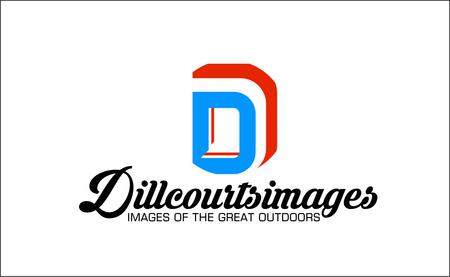 dillcourtsimages Logo