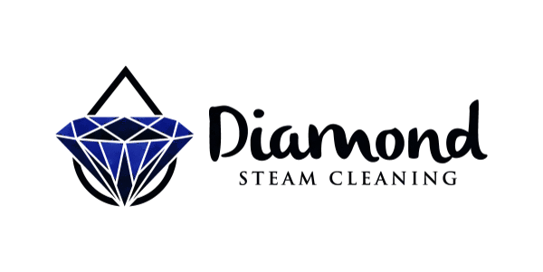 Diamond Steam Cleaning Logo