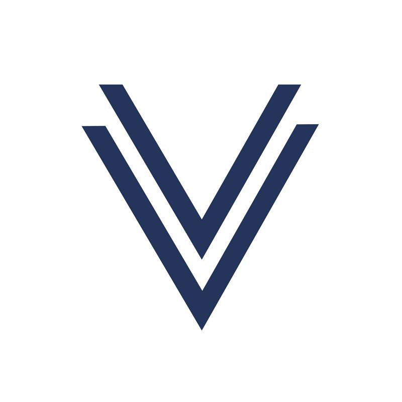 Valta Real Estate Group Logo