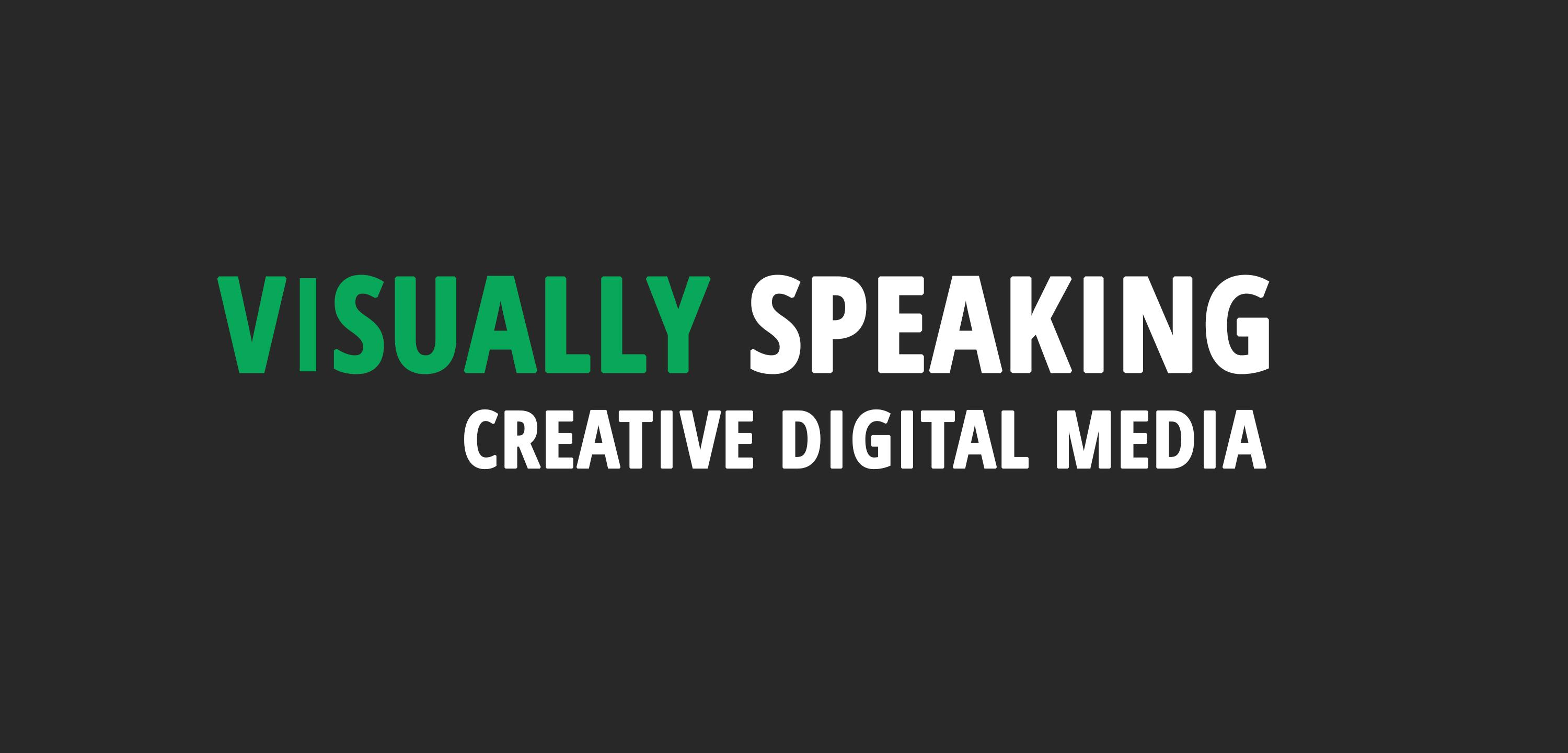 Visually Speaking Logo