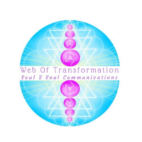 Web of Transformation Logo
