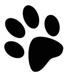 Veterinaria Test Premium Logo