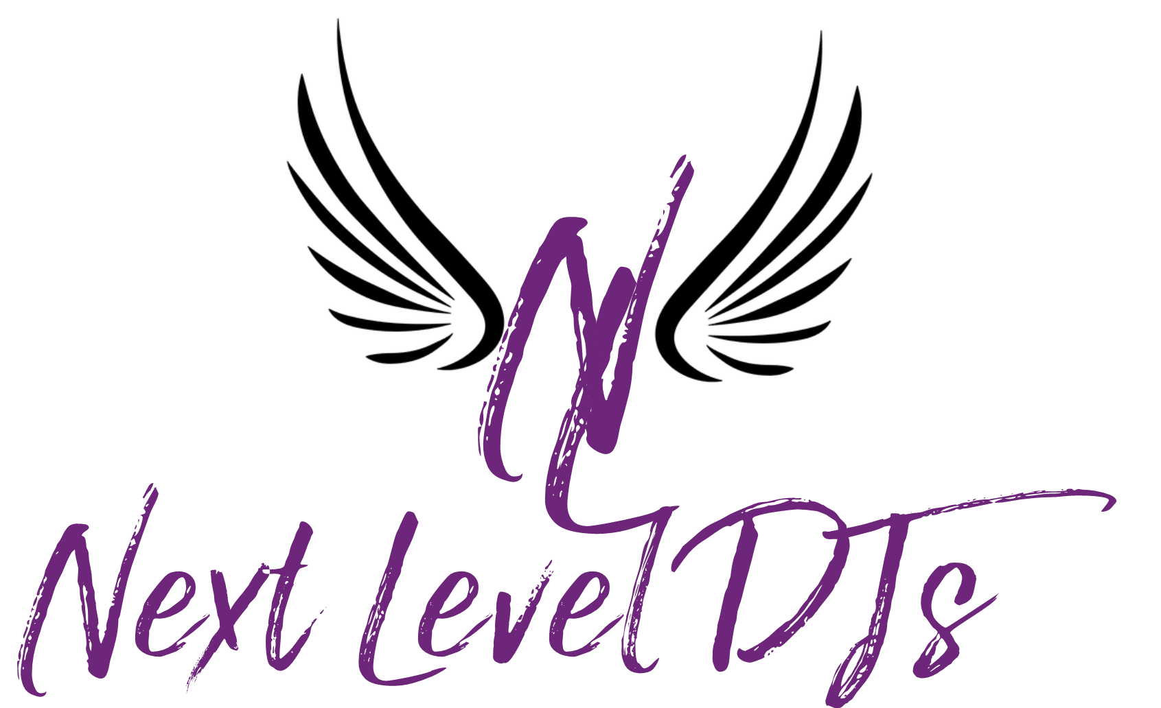 The Next Level DJs, LLC Logo