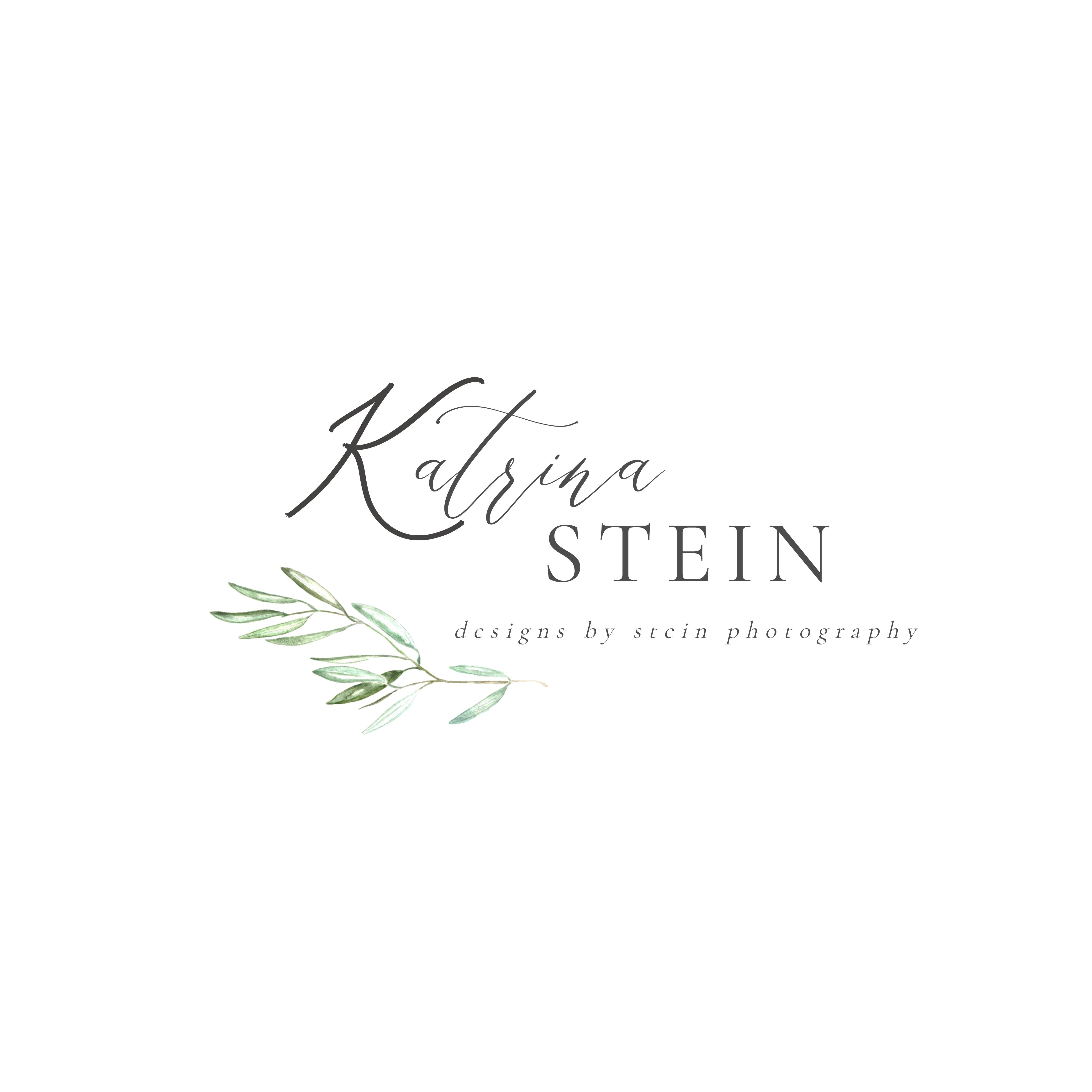 Designs by Stein Photography Logo