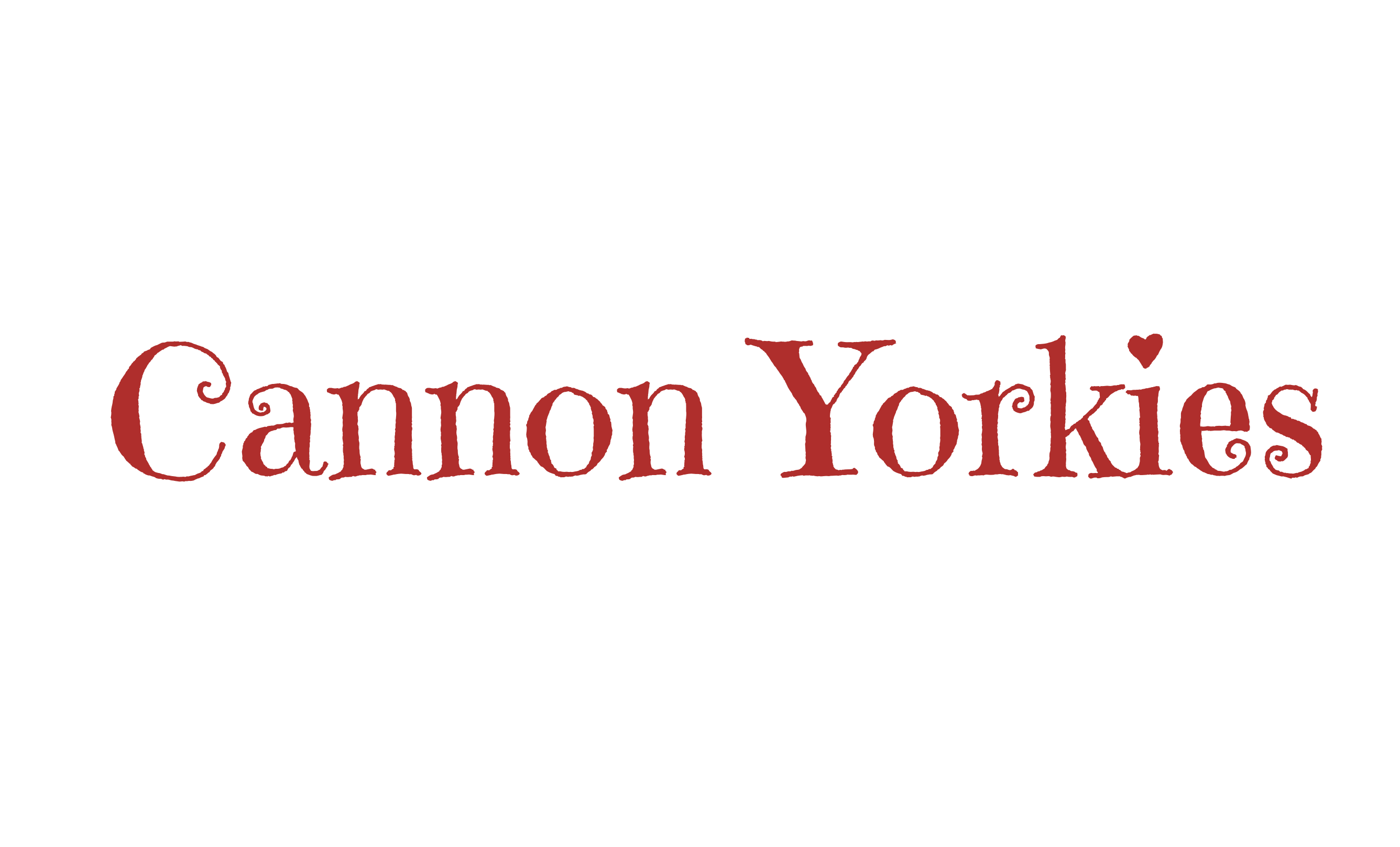 Cannon Yorkies Logo