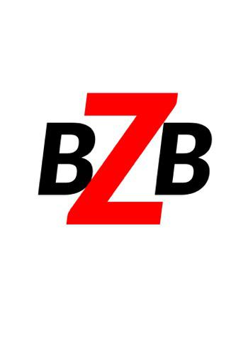 BZB Contracting Logo