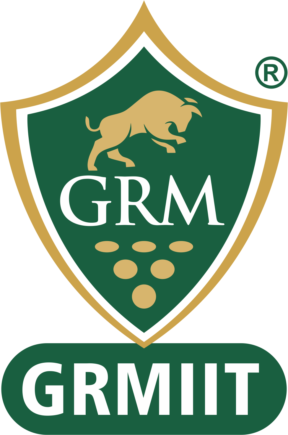 GRM Institute of Investment and Trading Logo