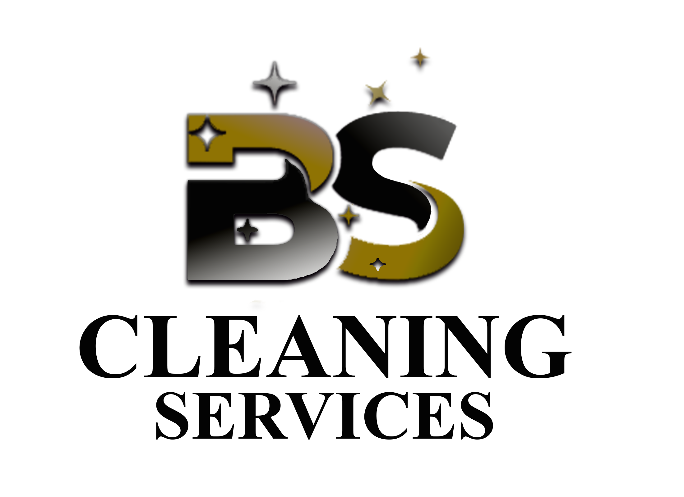BS CLEANING SERVICES Logo